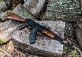 AK47 by spaxspore.jpg
