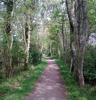 Avenue Verte - Section of NCN Route 21 north of Heathfield