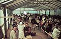 A Besszarábiából menekített német nemzetiségűek átmeneti tábora. Fortepan 84027.jpg