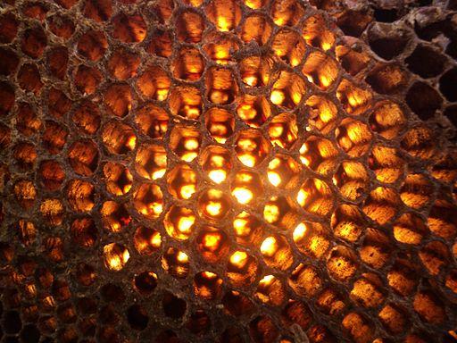 A Fire Honeycomb