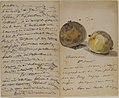 A Letter to Eugène Maus, Decorated with Two Plums MET 2003.1 recto.jpg