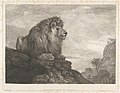 A Lion (A Lion Resting on a Rock) MET DP833337.jpg