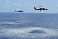 A U.S. Navy MH-60R Seahawk helicopter, right, assigned to Maritime Strike Squadron (HSM) 71 and an MH-60S Seahawk helicopter assigned to Helicopter Sea Combat Squadron (HSC) 8 participate in an air power 130420-N-TC437-792.jpg