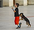 A dog playing with a children (9982158234).jpg