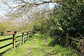 A lane at the west of High Beech, Essex, England.jpg