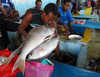 Economy of Solomon Islands - A man sells fish at the central market in Honiara, 2013.