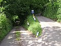 A tight turn off the Ashcombe Road - geograph.org.uk - 1328090.jpg