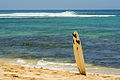 Abandoned Surfboard.jpg
