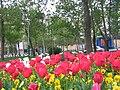 Abbasabad, Tehran, Tehran, Iran - panoramio - Behrooz Rezvani (29).jpg