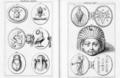 Abraxas seu Apistopistus - Talisman pg.072.png