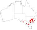 Acacia cardiophyllaDistMap163.png