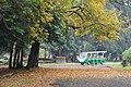 Acharya Jagadish Chandra Bose Indian Botanic Garden - Howrah 2011-02-20 1572.JPG
