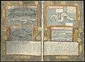 Adriaen Coenen's Visboeck - KB 78 E 54 - folios 153v (left) and 154r (right).jpg