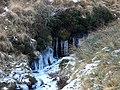 Afon Bidno - geograph.org.uk - 1114815.jpg