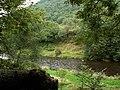Afon Rheidol - geograph.org.uk - 70803.jpg