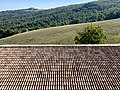 Agriturismo Cavazzone, Viano, Italy, 2019 - views from windows 10.jpg