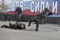 Airborne Troops Day 2013 (509-25).jpg