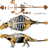 Akainacephalus reconstructions.png