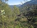 Akoli valey - panoramio (3).jpg
