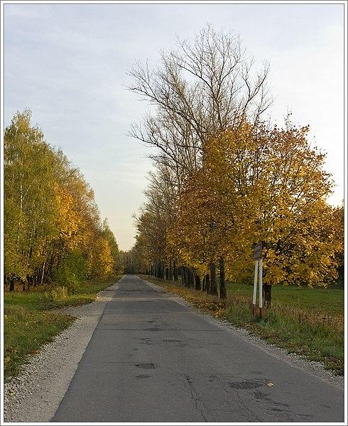 File:Akulovsky channel area - Korolev, Russia - panoramio - Sergey Ashmarin.jpg