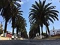 Alameda Bolognesi.jpg