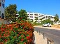 Albufeira (Portugal) (12416483554).jpg