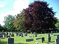 All Saints churchyard, Crudwell - geograph.org.uk - 433707.jpg