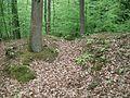 Altschloss - Ketternschwalbach 036.JPG
