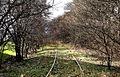 Amagerbanen april2013x.jpg