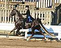 American Saddlebred 2.jpg