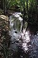 Amstelbach 9 Bachverlauf unterhalb der Obermühle.jpg