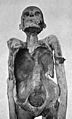 Anterior aspect of the mummy of a priest. Wellcome M0019339.jpg