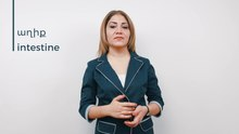 Պատկեր:Armenian Sign Language (ArSL) - աղիք - intestine.webm
