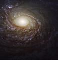 Arp 78 - NGC 772.png