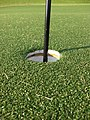 Artificial turf green.JPG