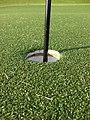 Artificial turf green.JPG