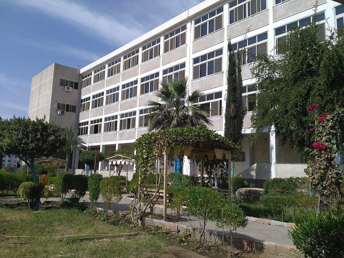 Aswan University - Wikipedia