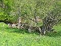 Auberge du Monné - panoramio.jpg