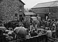Auction of Carreg farm, Glandyfi (10977754954).jpg