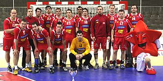 Austria national handball team - Austria national handball team 2010-01-09