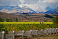 Autumn in the Awatere Valley.jpg