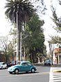 Avenida del Progreso 01.jpg