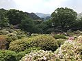 Azalea Valley in Mifuneyama Garden 4.jpg