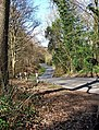 B4194 road to Bewdley by Ribbesford Wood - geograph.org.uk - 1727765.jpg