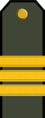 BG-Army-OR6.png