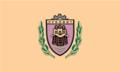BGR Луковит flag.png