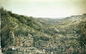 Methye Portage - The Clearwater River valley from the portage by George Back in 1825
