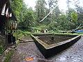 Bagdwar pond.jpg
