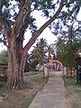Balighat temple.jpg