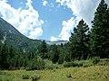 Bansko, Bulgaria - panoramio (30).jpg